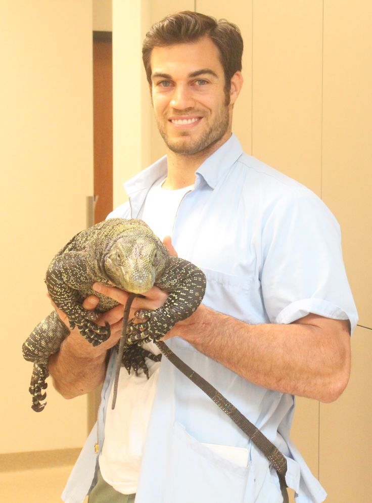 Dr. Evan Antin Is More Than Just The Worlds Sexiest Beast