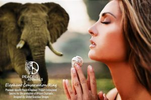 KC Elephant Conservation Ring