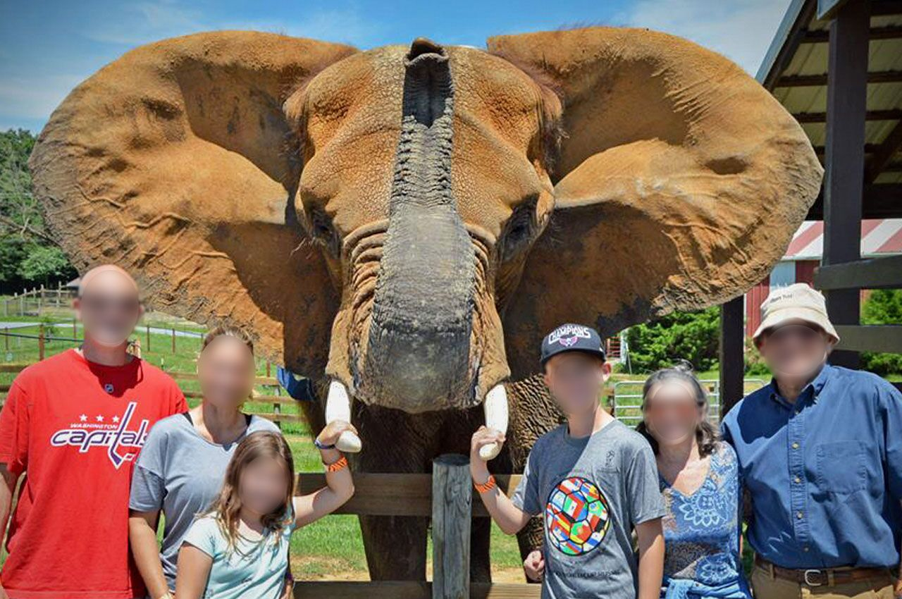 Breaking! In Defense Of Animals' List Of The 10 Worst Zoos